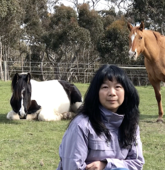 Linda with horses